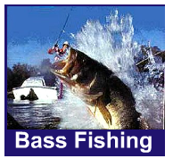 Bassd Fishing Equipment